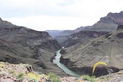 Grand Canyon 2015 691