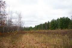 North Central Minnesota (GSankary) Tags: fall farm farms ruralscenes farmscenes