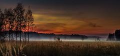 The valley of fog (piotrekfil) Tags: trees sunset sky mist nature field fog landscape twilight pentax dusk meadow poland piotrfil