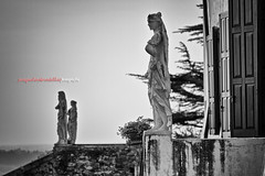 Abbazia di Rosazzo (Pachibro Portfolio) Tags: church abbey statue canon eos basilica jesus chapel belltower chiesa campanile monastery 7d rood convent statua monastero croce manzano abbazia udine ges friuliveneziagiulia collio rosazzo canoneos7d scattifotografici pasqualinobrodella pachibroportfolio pachibro