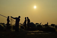 Marina mornings! (surajr90) Tags: travel india beach silhouette yellow marina sunrise nikon colours fishermen explore nikkor nets marinabeach chennai unedited sharpness nikonphotography indianphotographers mychennai