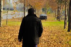 Kashif Afridi Taxila cantt (KASHIF_AFRIDI) Tags: autumn tourism taxila taxilacantt