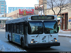 Winnipeg Transit #445 (vb5215's Transportation Gallery) Tags: winnipeg transit 1999 new flyer d40lf