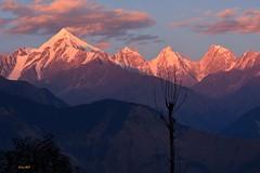 Sunset on Panchachuli range (draskd) Tags: panchachulirange munsiary uttarakhand india sunset nature himalayas kumaon beautifulsunset draskd nikond7100 nikkor munsiyari