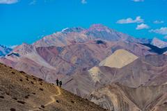 India, Kashmir, Ladakh (David Ducoin) Tags: altitude asia chanhthang hiking himalaya india ladakh landscape mountain nature northindia tibet trek treking trekking walking zanskar leh kashmir in