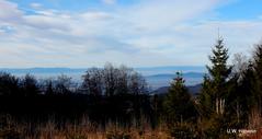DSCN0831 (derudo) Tags: südschwarzwald stohren münstertal vogesenblick blickindierheinebene