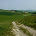 Chalk Track In The Downs (Louise and Colin) Tags: