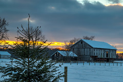 Cold Evening on the Farm (tquist24) Tags: goshen hdr indiana nikon nikond5300 barn clouds cold evening farm fence geotagged rural rustic sky snow sunset tree trees winter unitedstates
