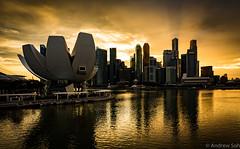 Golden City (Visualvalhalla) Tags: singapore challengeyouwinner sunset glow golden dramatic reflections skyline city clouds marina bay sands