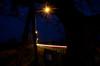 Looking through Ketts Oak (Jacob Kenworthy) Tags: kettsoak wymondham landscape light le longexposure traffictrails