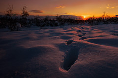 Follow the trails (dontgiveacake) Tags: trails foot prints snow sun sunset light bulgaria sky
