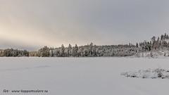 20170222100819 (koppomcolors) Tags: koppomcolors vinter winter värmland varmland sweden sverige scandinavia