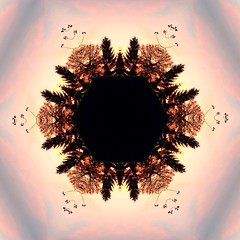 Tree Art (Heaven`s Gate (John)) Tags: kaleidoscope nature landscape johndalkin heavensgatejohn england pattern dawn sunrise blue sky silhouette