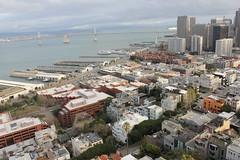 Coit Tower, 1 Telegraph Hill Blvd, San Francisco, CA 94133, USA (31) (alexanohan) Tags: coittower