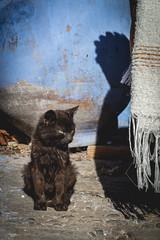Xauen HD_DSC0286 (ernikon) Tags: xauen chouen chefchouen maroc marroc