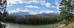 Scenic Bow Valley Parkway - Panorama - Banff National Park, Alberta, CA (André-DD) Tags: cans2s canada kanada urlaub vacation alberta herbst fall autumn outdoor clouds mountain landscape hill mountainside banff national park banffnationalpark nationalpark bäume baum tree trees serene mountains berge berg natur nature wiese meadow bowvalley bowvalleyparkway sonne sun bowriver river fluss kurve bend panorama
