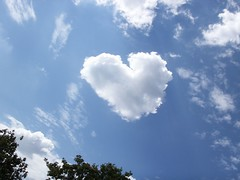 Magical Love in the Sky (FOTOGRAFIA.Nelo.Esteves) Tags: usa cloud beautiful wow wonderful spectacular us interestingness amazing cool nice fantastic perfect unitedstates heart superb florida awesome great 2006 explore precious fl lovely fabulous congratulations incredible magickingdom konicaminolta lakebuenavista waltdisneyworldresort dimagex1 neloesteves views3000 abigfave 20070604