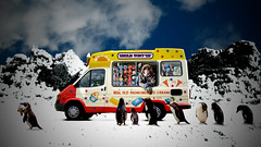 Ice cream day dream (Matt West) Tags: snow cold art ice effects penguin funny joke icecream inuit topv777 eskimo views2000 100funniest views1750