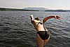 Dive into summer (Ben McLeod) Tags: swimming boat katie dive newhampshire sunapee lakesunapee sigma1224mmf4556dg