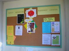 RMBC noticeboard 1