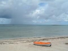 paradise cove beach (stupid clever) Tags: beach rain snorkeling reef grandbahamaisland paradisecove