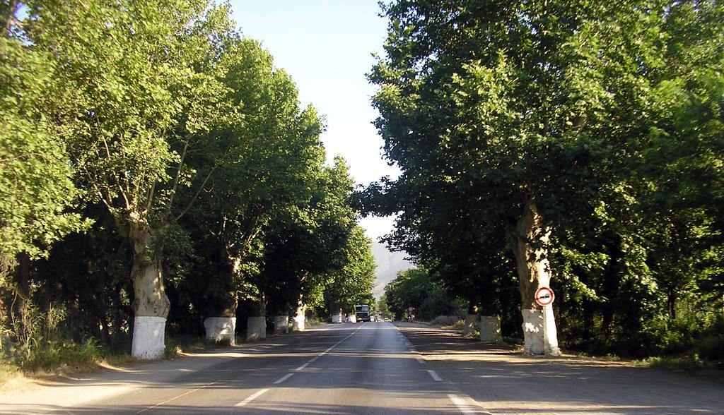 مدينة البليدة مدينة الورود 194426942_4be45a96d7