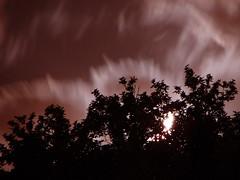 - Moonset in Horizon (Hamed Saber) Tags: moon tree silhouette night geotagged ir persian interestingness friend die iran horizon persia saber iranian tehran  hamed moonset farsi    flickrexplore         geo:lon=5146202 geo:lat=35824215