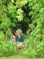 Summer at Taraloka