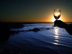 toast (electronic alchemist) Tags: wine 123 blueribbonwinner interestingness394 i500 utatafeature utatasilhouette fcsea