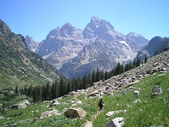 42-view of mount owen and the upcoming forest (philosophychick) Tags: tetons grandtetonnationalpark