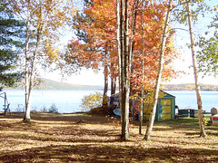 The Yard (kategottli) Tags: ottawa ottawariver stonecliffe