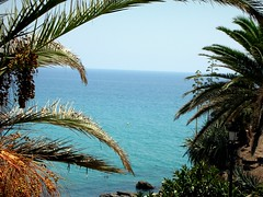Mediterranean (jon|k) Tags: travel sea vacation spain palmtrees nerja balconyofeurope mediterranenan