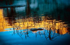 alpenglow reflections (rappensuncle) Tags: blue light orange lake color reflection film water grass yellow 35mm slide predigital kodachrome sierranevada alpenglow rappensuncle nikkormatel nikoncoolscanv alpenglowreflections