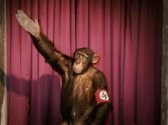 Heil Hitler, das Schwein ist tot