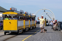 Train spotting (* RICHARD M (Over 5.5 million views)) Tags: street candid trainspotting trainspotter photographer tog wallytrolley southportpier pier boardwalk fun southport sefton merseyside sunnysouthport resorts holidayresorts seaside seasideresorts summer summertime august holidaymakers daytrippers sunshine bst england unitedkingdom uk greatbritain gb britain britishisles arches dog petdog dogwalker dogwalking sunhats happy happiness
