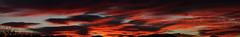 Sunrise 11 16 16 #16 Panorama (Az Skies Photography) Tags: sun rise sunrise morning dawn daybreak sky skyline skyscape clouds cloud red orange yellow gold golden salmon black canon eos rebel t2i canoneosrebelt2i eosrebelt2i rio rico arizona az riorico rioricoaz arizonasky arizonaskyline arizonaskyscape arizonasunrise november 16 2016 november162016 111616 11162016
