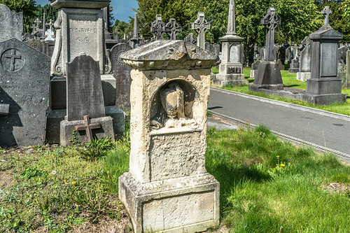 GLASNEVIN CEMETERY [MY FIRST DAY USING THE NEW SONY A7RMkII] REF-107421