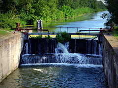 August 22, 2015 (GoddessOfRocks) Tags: trees fall water canal illinois hennipin geneseo