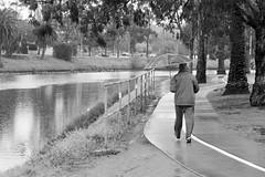 Maribyrnong (wtewg) Tags: blackandwhite river monochromatic days rainy riverbank bnw 27thaugust2015maribyrnongvictoriaaustralianikond5050mm