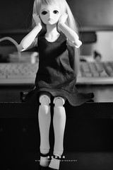 Marta_20150814 at 13-38-26-Edit.jpg (Kim Jaehoon) Tags: portrait stilllife toy photography doll nopeople korea indoors bjd southkorea denis incheon bluefairy balljointeddoll colorimage artistsontumblr photographersontumblr originalphotographers