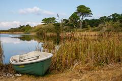 Great Pool, Tresco (gwynna) Tags: scillies scillyisles