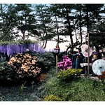THREE GEISHA IN A FLOWER GARDEN UNDER PINES thumbnail
