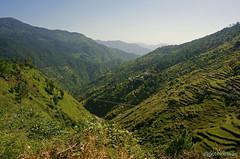 Mountainscape near Noradhar (bNomadic) Tags: road trip travel green forest trek shimla weekend cottage peach peak bowl orchard trekkers adventure monastery journey valley apricot destination chur serene himachal himalayas jams chandigarh pradesh khash giri rajput chail rajgarh chandani shivalik solan devta dolanji menri churdhar habban giripul sirmour sirmaur choordhar shirgul bnomadic ochhghat bhuira pachhota noradhar