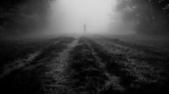 from the mist (Natalini Cristian) Tags: monocromo strada streetphotography via persone nebbia bianco atmosfera nero cristian bosco magia pistoia prospettiva sensazioni solitudine contrasto mistero oscurità natalini