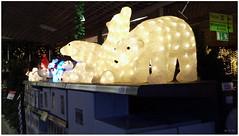 DSCI8498 (aad.born) Tags: christmas xmas weihnachten navidad noel  tuin engel nol natale  kerstmis kerstboom kerst boi kerststal  kribbe versiering kerstshow  kerstversiering kerstballen kersfees kerstdecoratie tuincentrum kerstengel  attributen kerstkind kerstgroep aadborn nativitatis