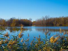 Duero otoñal (3) (Luicabe) Tags: naturaleza río exterior paisaje explore otoño luis zamora cabello duero airelibre yarat1 enazamorado luicabe
