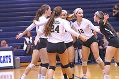 IMG_8316 (SJH Foto) Tags: girls volleyball high school york delone catholic team teen teenager huddle hug
