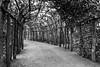 Potsdam - Pergola (superbart77) Tags: blackandwhite fuji fujifilm park potsdam sanssouci xt2 garden monochrome pergola sizilianischergarten xf16mm brandenburg deutschland de