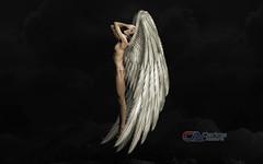 Carlos Atelier2 - O vôo (Carlos Atelier2) Tags: carlos atelier2 mulher asa voo preto noite surreal