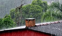 chuva de Verão (Ruby Ferreira ®) Tags: chuva rain chaminé chimney branches trees árvores